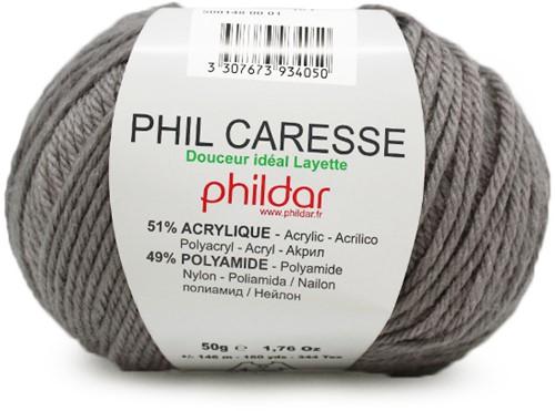 Phildar Phil Caresse 1447 Acier