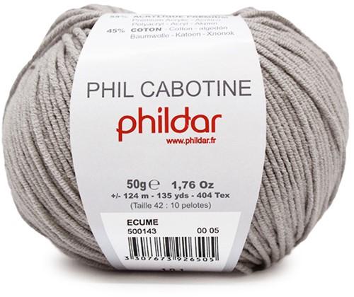 Phildar Phil Cabotine 1447 Ecume