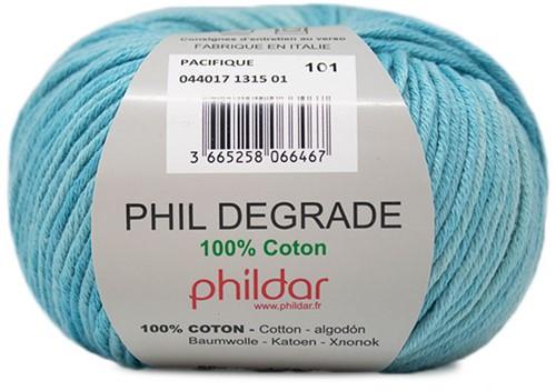 Phildar Phil Degrade 1315 Pacifique