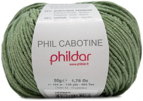 Phildar Phil Cabotine 2099 Herbier