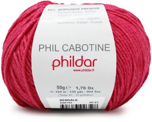 Phildar Phil Cabotine 1155 Bengale