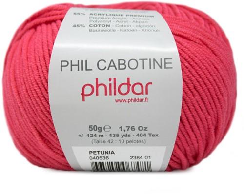 Phildar Phil Cabotine 2384 Pétunia