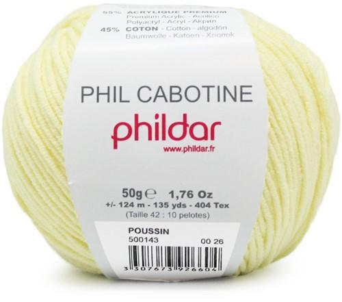 Phildar Phil Cabotine 1019 Poussin