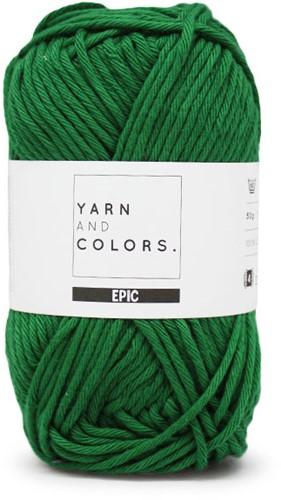 Yarn and Colors Epic 087 Amazon