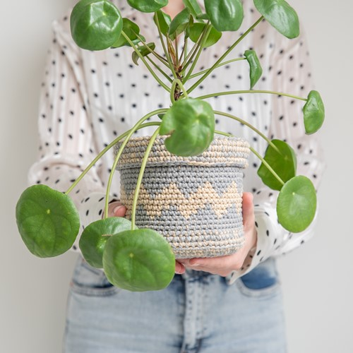 Crochet Pattern Yarn and Colors Basic Plant Baskets