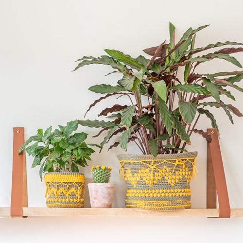 Yarn and Colors Boho Plant Baskets Crochet Kit 090 Olive