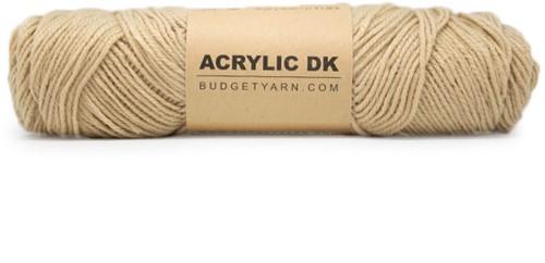 Budgetyarn Acrylic DK 009 Limestone