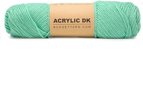 Budgetyarn Acrylic DK 075 Green Ice
