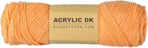 Budgetyarn Acrylic DK 016 Cantaloupe