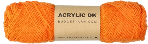 Budgetyarn Acrylic DK 020 Orange