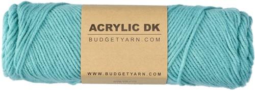 Budgetyarn Acrylic DK 072 Glass