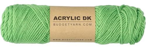 Budgetyarn Acrylic DK 082 Grass