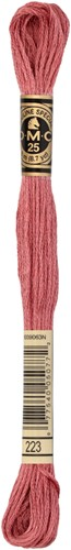 DMC 117MC Mouliné Spécial Embroidery Thread 8m 223