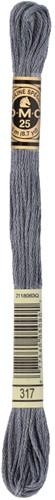 DMC 117MC Mouliné Spécial Embroidery Thread 8m 317