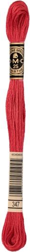 DMC 117MC Mouliné Spécial Embroidery Thread 8m 347