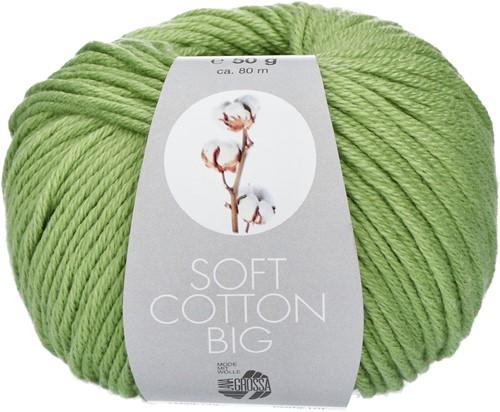 Lana Grossa Soft Cotton Big 11 Light Green