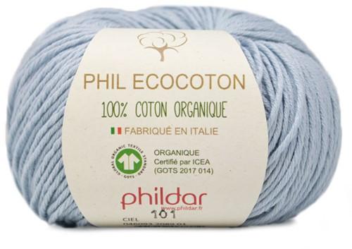 Phildar Phil Ecocoton 2089 Ciel