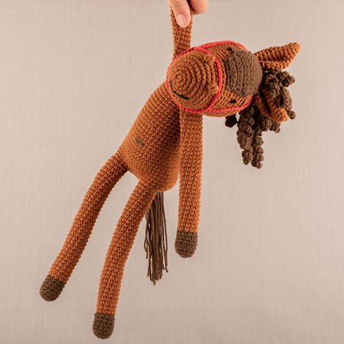 Crochet Pattern Yarn and Colors Hank Horse