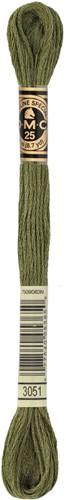 DMC 117MC Mouliné Spécial Embroidery Thread 8m 3051
