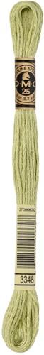 DMC 117MC Mouliné Spécial Embroidery Thread 8m 3348