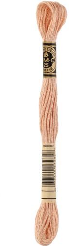 DMC 117MC Mouliné Spécial Embroidery Thread 8m 3771