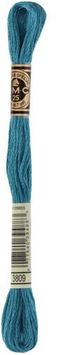 DMC 117MC Mouliné Spécial Embroidery Thread 8m 3809