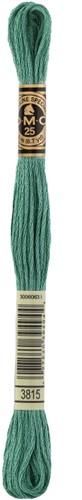 DMC 117MC Mouliné Spécial Embroidery Thread 8m 3815