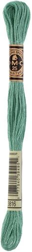 DMC 117MC Mouliné Spécial Embroidery Thread 8m 3816