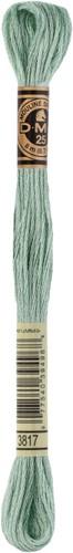 DMC 117MC Mouliné Spécial Embroidery Thread 8m 3817