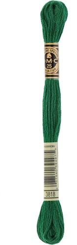 DMC 117MC Mouliné Spécial Embroidery Thread 8m 3818