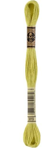 DMC 117MC Mouliné Spécial Embroidery Thread 8m 3819