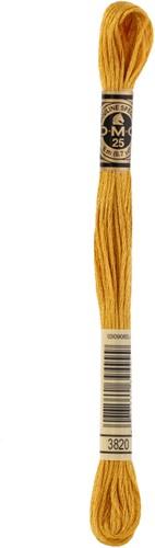 DMC 117MC Mouliné Spécial Embroidery Thread 8m 3820