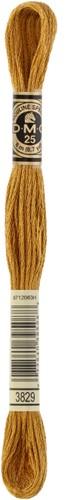 DMC 117MC Mouliné Spécial Embroidery Thread 8m 3829