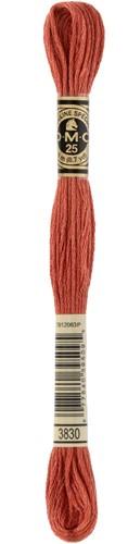 DMC 117MC Mouliné Spécial Embroidery Thread 8m 3830