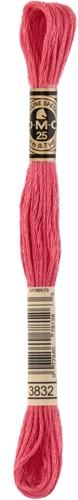 DMC 117MC Mouliné Spécial Embroidery Thread 8m 3832