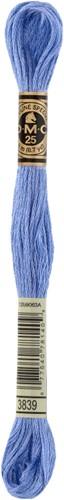 DMC 117MC Mouliné Spécial Embroidery Thread 8m 3839